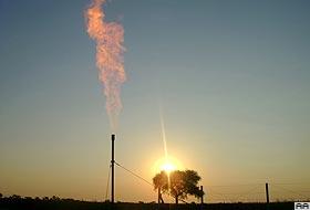 2008'de 12 petrol kuyusu daha açacak