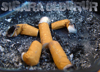 Sigaradaki sır gibi saklanan o madde !