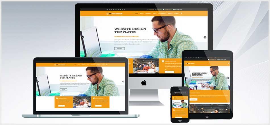 Web Tasarımında Seçkin Firma Tasarımmania