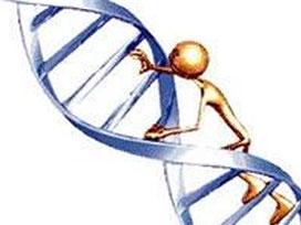 Gelişimi bozan 6 yeni gen bulundu