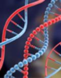 Akıllı DNA yaptılar