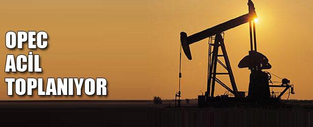 OPEC ACİL TOPLANIYOR