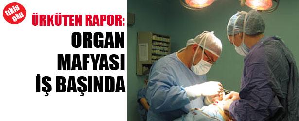 ORGAN MAFYASI İŞ BAŞINDA