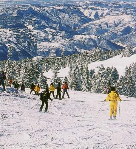 Şimdi kayak zamanı!