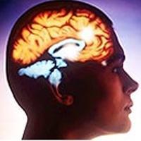 Diyet hafızayı güçlendiriyor