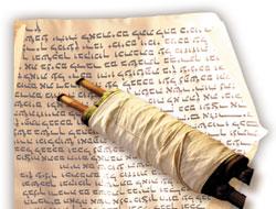 800 yıllık Tevrat ele geçirildi