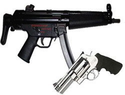TMSF'den satılık silah