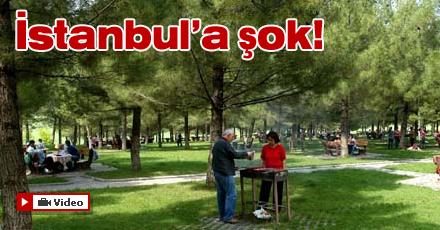 İstanbullulara kene şoku!