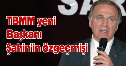 Mehmet Ali Şahin'in özgeçmişi
