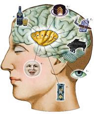 Beyniniz hakkında 10 şaşırtıcı gerçek