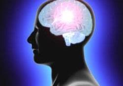 İnsan beyni küçülüyor