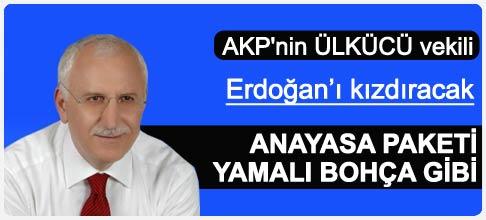 AKP'li Özcan Erdoğan'ı kızdıracak