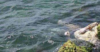 Kadıköy'de denizden ceset çıktı!