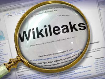 Banu Avar da Wikileaks için yazdı