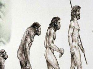 TÜBİTAK Evrim Teorisinin Canına Okudu ve Kaldırdı!
